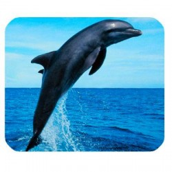 Mousepad Dolphin 23x18cm Laminated surface